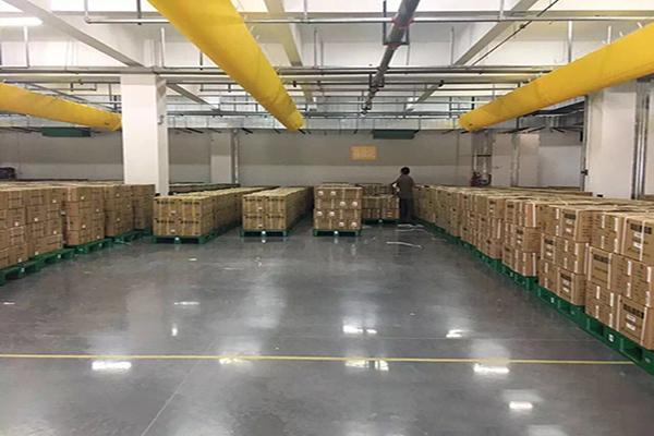 迪乐堡安斯福妙乐密封固化剂南京天星医药物流施工过程